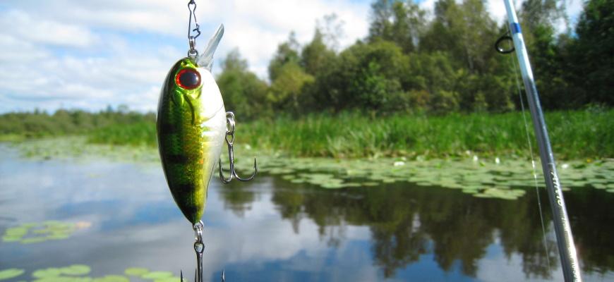 Ловля рыбы на воблер