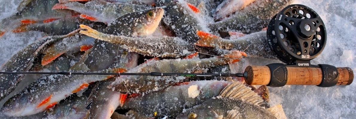 Рыбалка в перволедье
