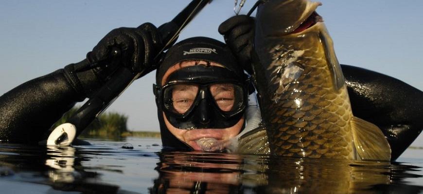 Улов подводной рыбалки