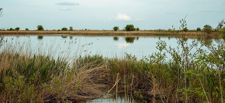 Озеро Таловатое