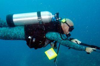 Ружьё для подводной охоты