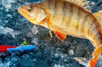 Катушки для зимней рыбалки